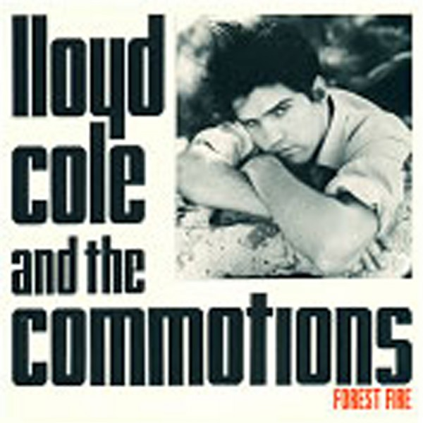 Lloyd Cole And The Commotions Perfect Skin